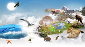 biodiversité-nca-ok.original[1]