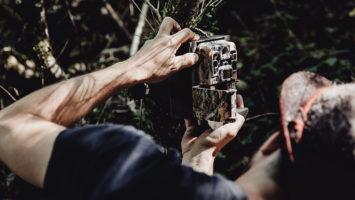 piège photographique chasse